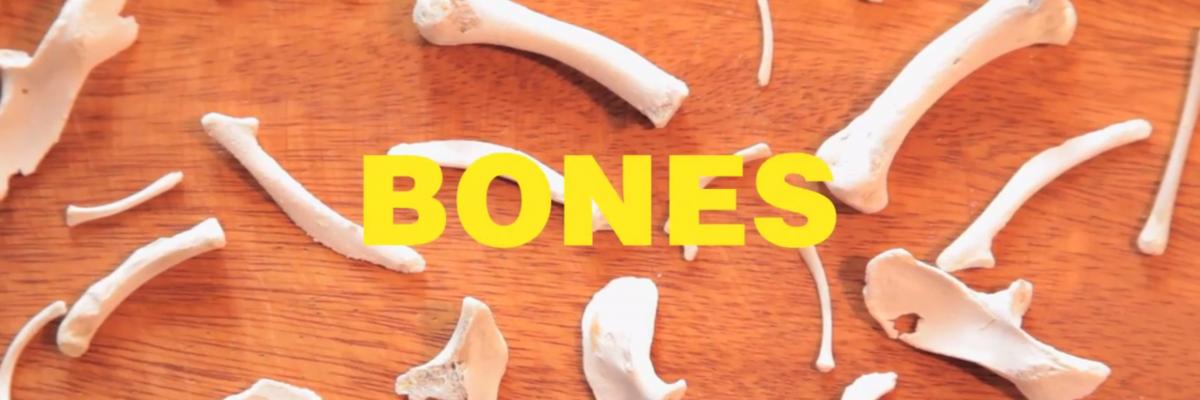 KFC Chicken Bone Necklace